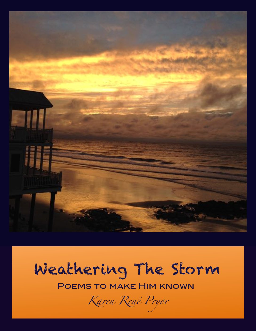 Weathering The Storm (Book Cover)